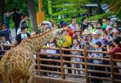 五一假期,山东多项旅游优惠措施受赞誉